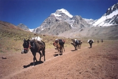 127_route_from_base_camp